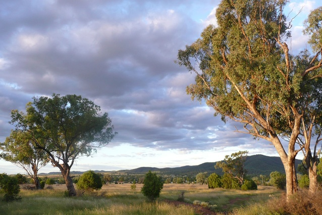 Living classroom site. Townships like Bingara will disappear, along with their productive lands, unless they reinvent themselves to attract farmers and workers back to the land.
