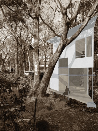 "Taringa Treehouse proposes an ""adult cubbyhouse"" that strives to amplify the beautiful experiences of its natural surrounds."