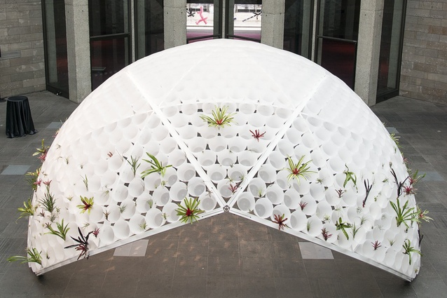 Detail of Rory Hyde's Bin Dome installation in timber, plastic and steel 'planted' with bromeliads and tillandsias.