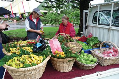 Farmers' markets bring healthier food to where people live, which improves the likelihood of healthy eating habits.
