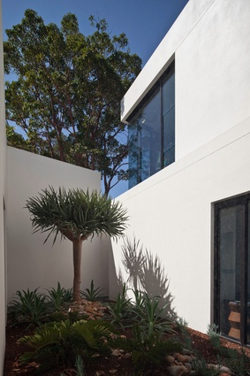 A pocket courtyard on the first level.