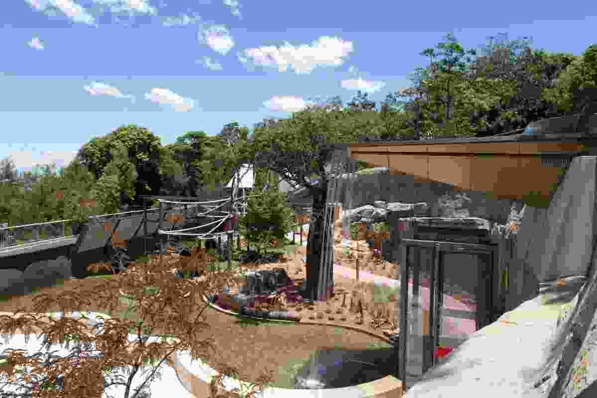 Lemur Forest Adventure by Jane Irwin Landscape Design.