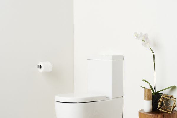 New Caroma Cleanflush toilets.