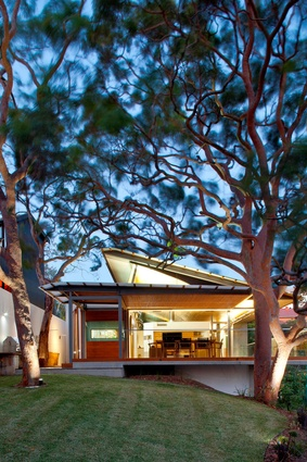 Angophora House by Richard Cole Architecture.