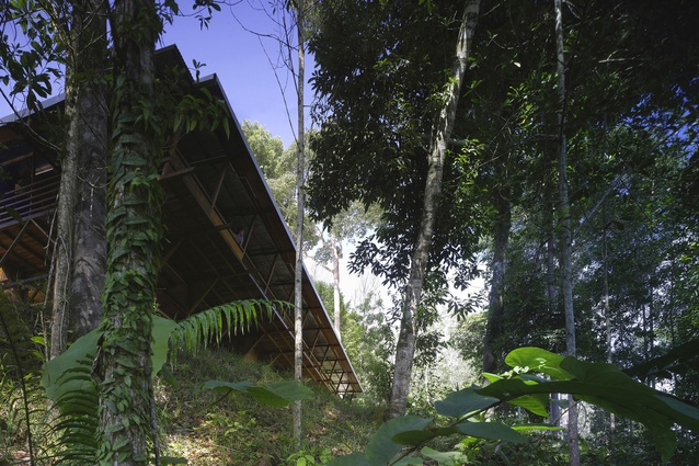 Shelter@Rainforest by Marra + Yeh Architects.