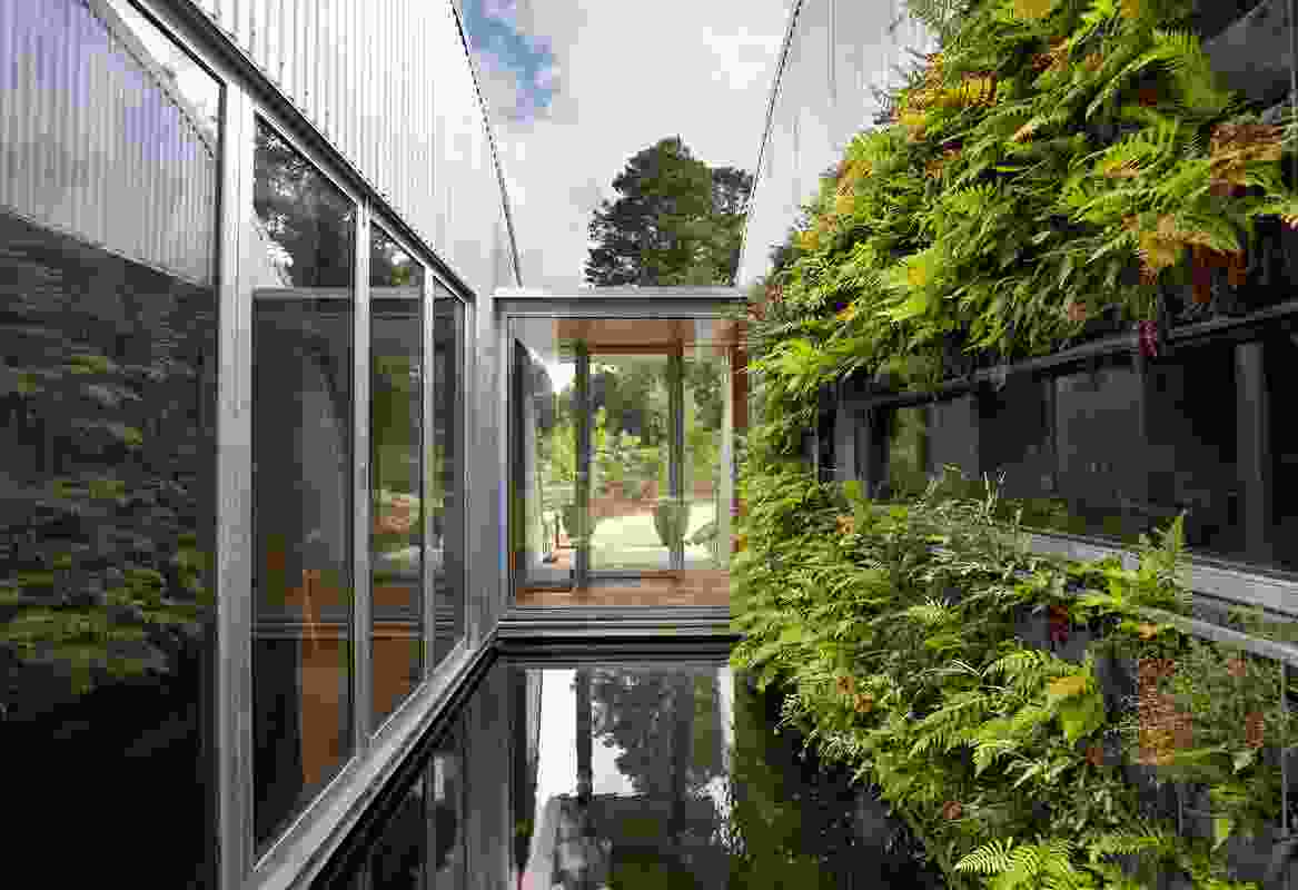 Blackheath House by James Stockwell Architect.