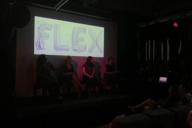 The Flex panellists.