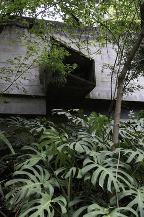Paulo Mendes da Rocha's own house in Butantã.