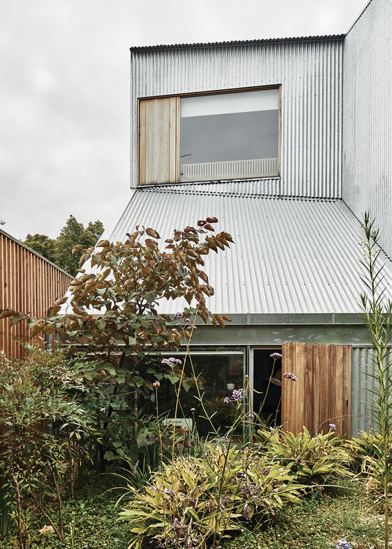 Windows set within corrugated steel cladding open to a shared garden located between the existing worker's cottage and the new house.