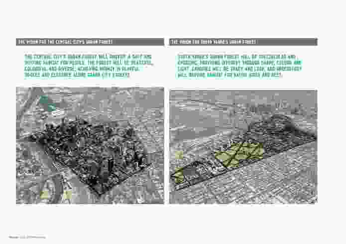 Melbourne's Urban Forest Strategy.