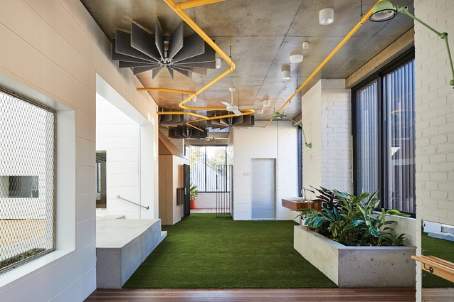 Brightly coloured sprinkler pipes and greenery playfully punctuate the consistent palette of timber, concrete and white surfaces.