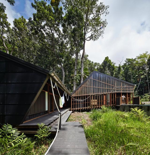 rainforest journey  cape tribulation house