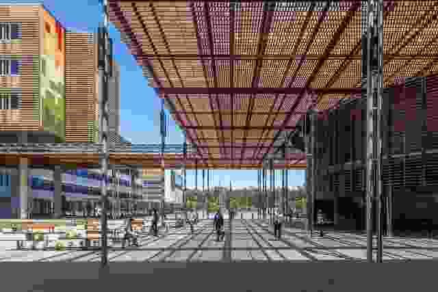 患者和游客通过宽敞的公共空间到达阳光海岸大学医院。