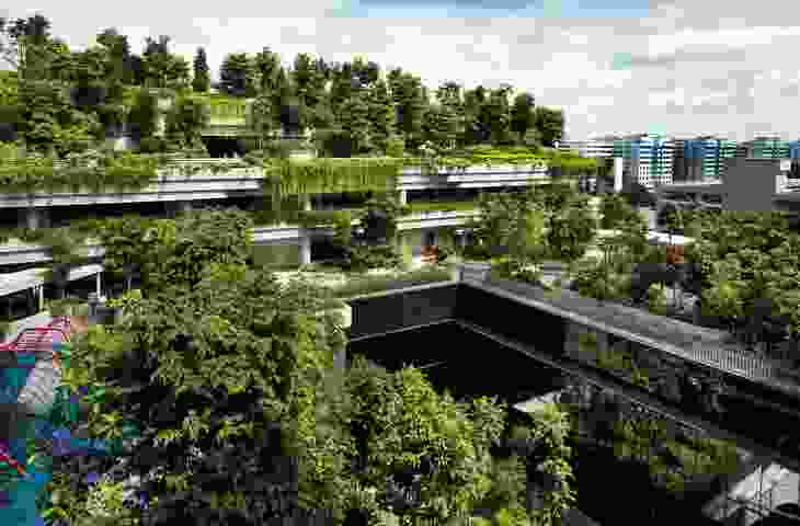 The planting scheme of the Kampung Admirality was designed by Ramboll Studio Dreiseitl. Plants overflow from each level, creating a community park for the 11 housing blocks.