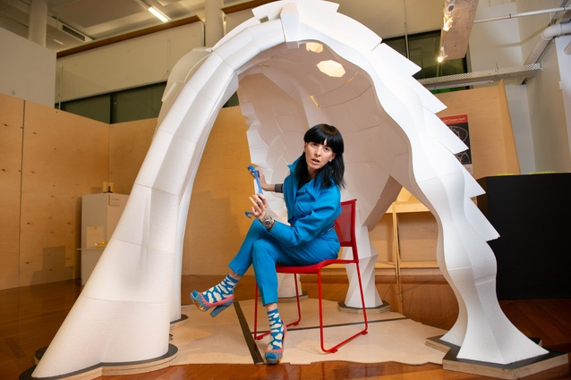 A new phase in the evolution of design research