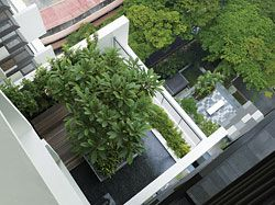 Looking down onto a cantilevered skygarden, with the environmental deck below. Image:Tim Griffiths