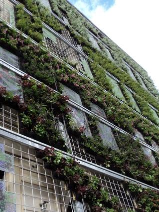 2012 aila national landscape architecture award research for Oxigen landscape