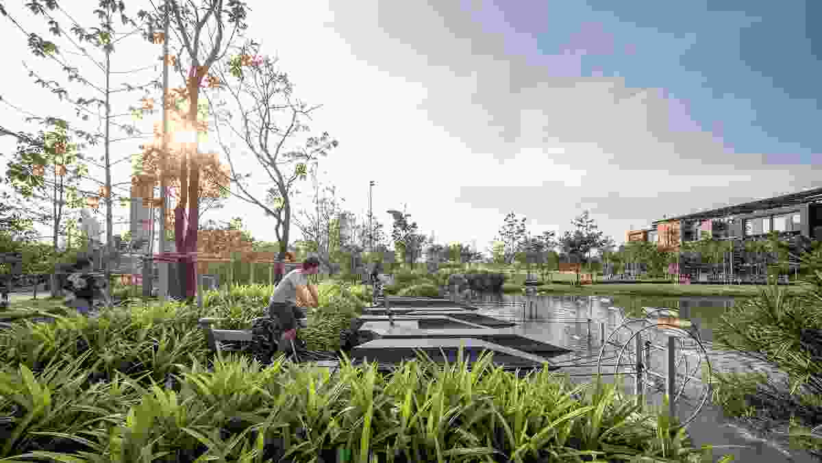 At Chulalongkorn University Centenary Park, visitors can peddle on stationary water bikes, exercising and keeping the water in the ponds aerated at the same time.