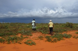 2012 AILA National Landscape Architecture Award: Planning