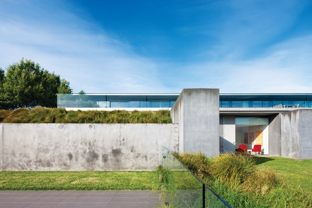 Looking back upon the house from the pool area, the hard planes of concrete are softened by overhanging grasses.