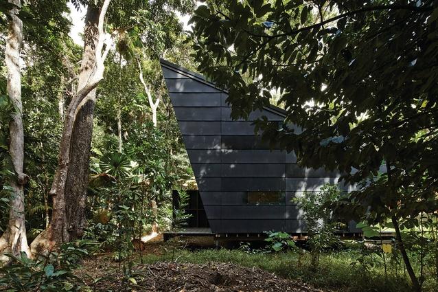 Cape Tribulation House by m3architecture.