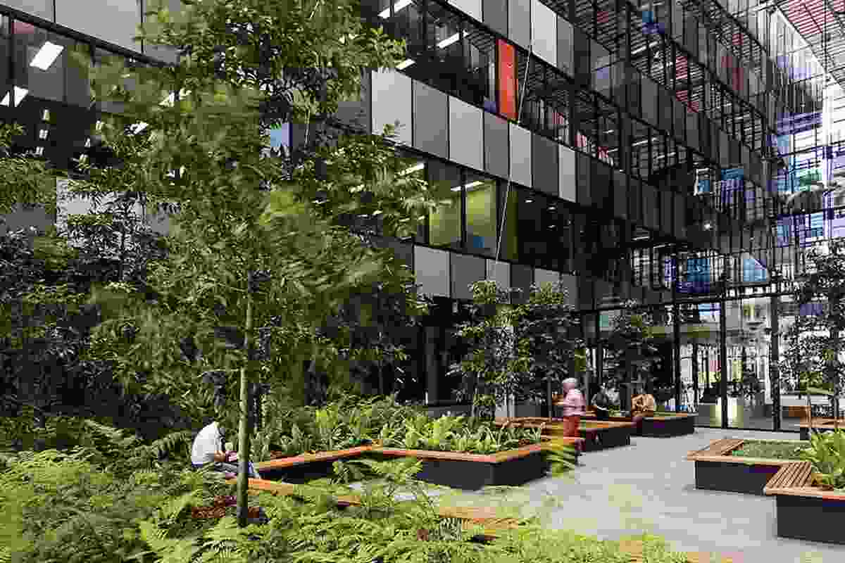 Ecosciences Precinct: Courtyards provide workers and visitors a place to talk and eat.