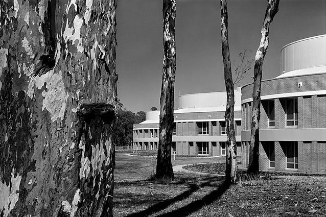 Carving: Fairfield Hospital, Sydney, NSW (1989).