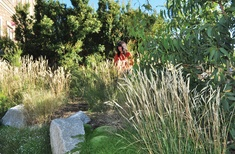 Living landscapes: Five residential gardens