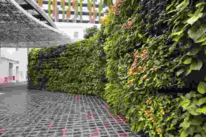 Elmich green wall.