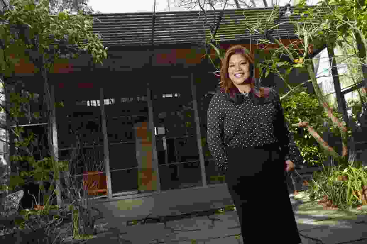 P. Joy Villalino, Robin Boyd Foundation's new CEO.