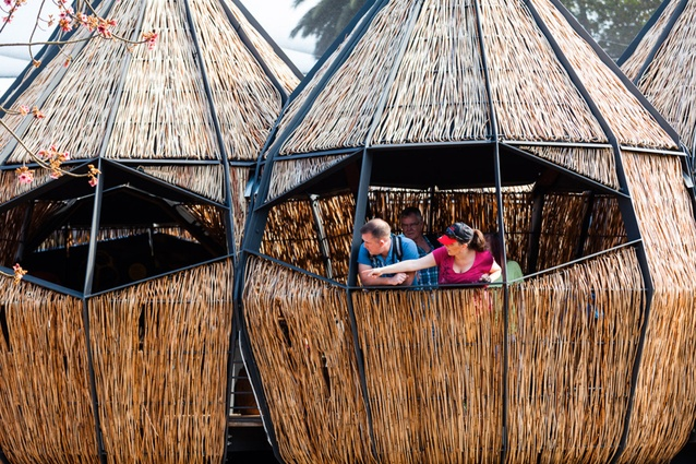 Clad in rattan, a material sympathetic to the lemurs' natural habitat, the Tree House provides an immersive experience for visitors.