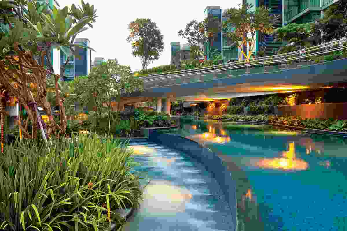 For the Duchess Residences in Singapore, STX crafted a terrain of gentle slopes and lush, multi-layered vegetation.
