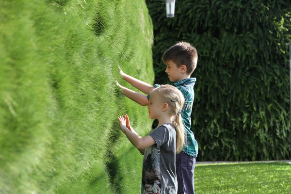 Children explore the planted terraces of the Lady Cilento Children's Hospital in Brisbane.