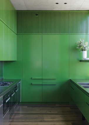 A bold experiment in detail, the mossy-green kitchen references the verdant garden while contrasting with the adjacent raw concrete.