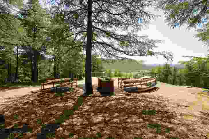 A picnic and barbecue area within the Himalayan cedar forest.