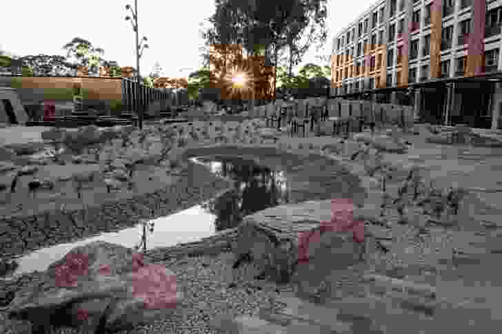 An ephemeral marsh and cracking claypan provide a focal point to the garden, which was inspired by the geology and geomorphology of Victoria.