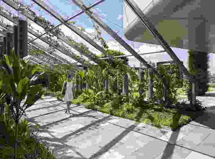 Lady Cilento Children's Hospital (roof gardens) by Conrad Gargett.