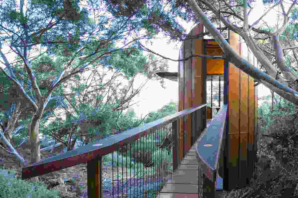 Tree Top Studio by Max Pritchard Architect.