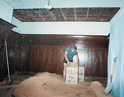 N°10 Removing the false ceiling in the large downstairs room revealed the original exposed Oregon beam structure and Californian redwood lining below the upstairs jarrah floorboards. The whole ceiling area void had been packed with sawdust, possibly for insulation.