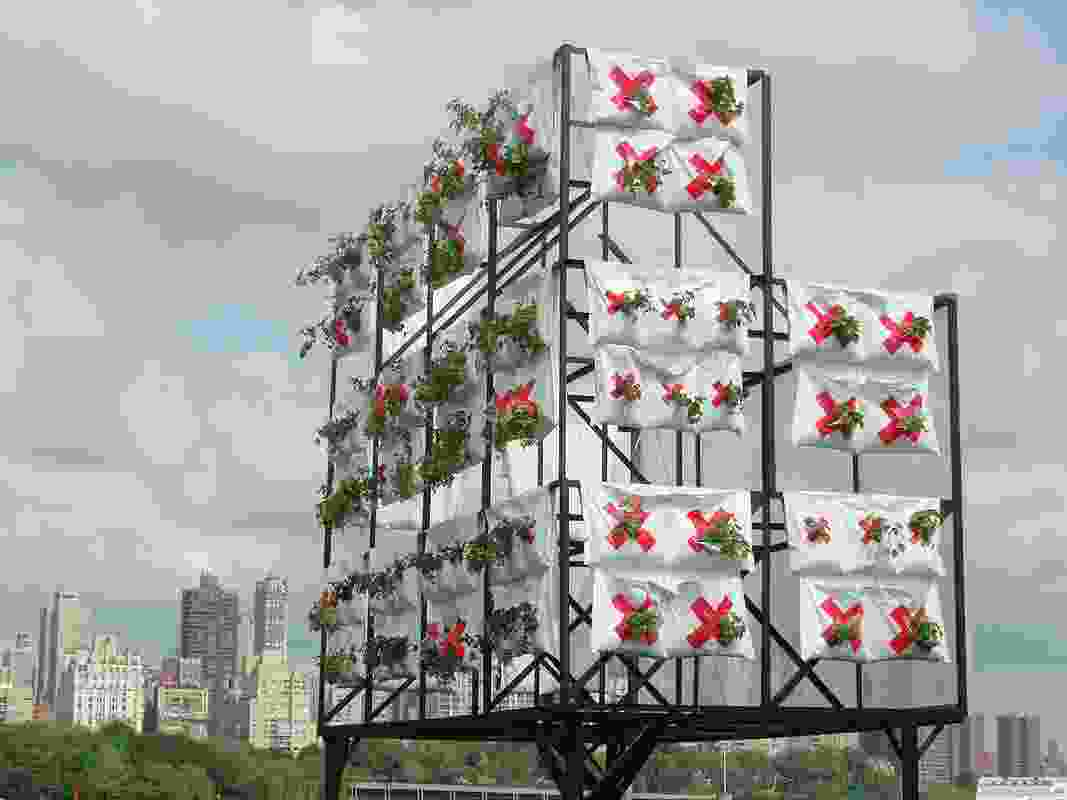 The xClinic's Farmacy is a distributed urban farm designed to improve environmental health, augment biodiversity, and produce delicious edibles.