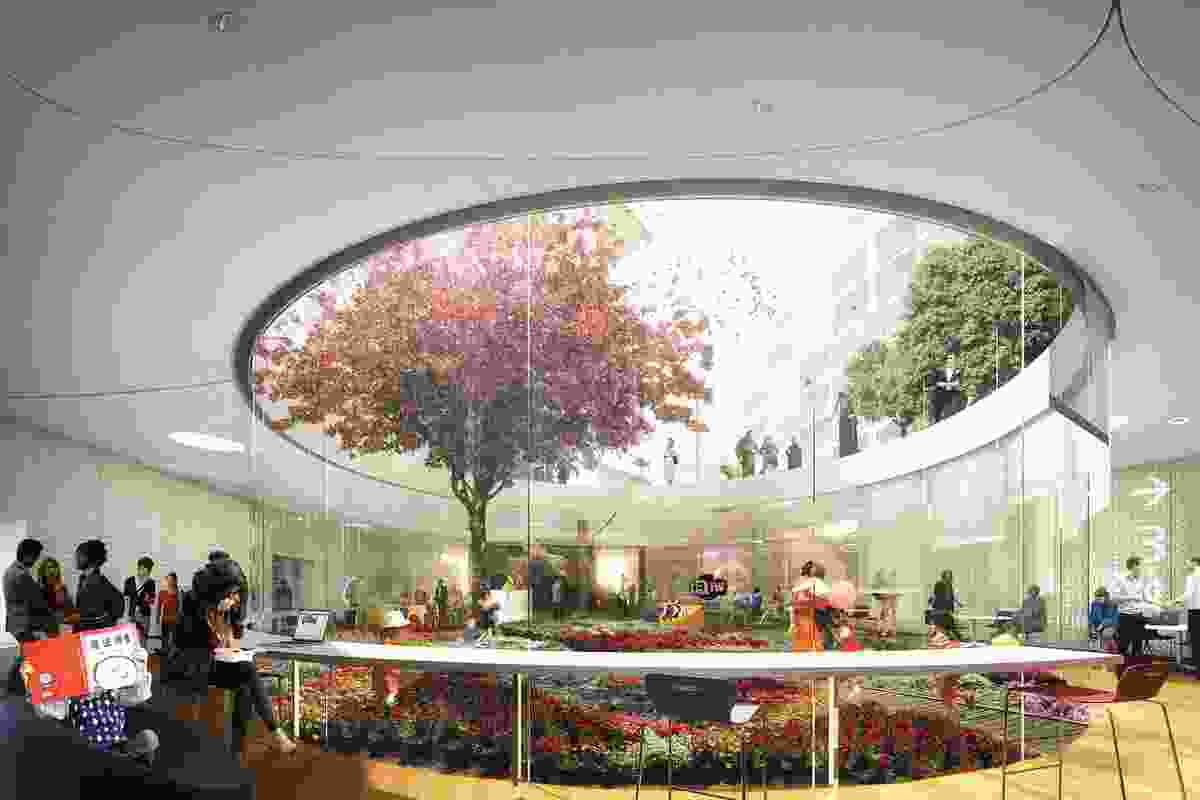 Stewart Hollenstein and Colin Stewart Architects' competition-winning proposal for the Green Square Library and Plaza includes a sunken garden at the heart of the library.