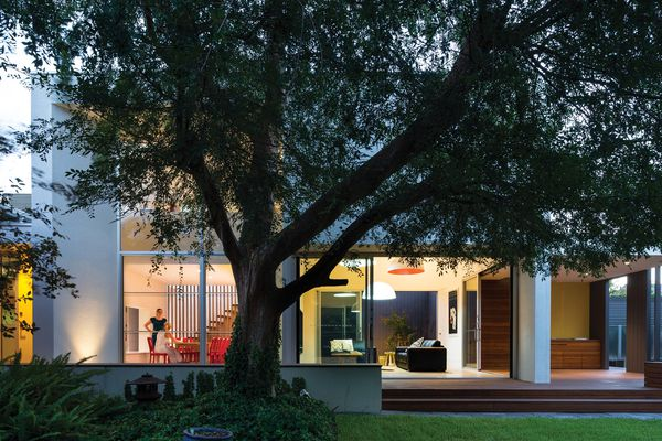 The Toorak Gardens Residence (Adelaide, 2013) responds to the large deciduous tree in the backyard and frames the garden.