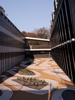 Looking into each of the four courtyards, with landscape design by Site Office. All work with contrast, using different patterns and colours.