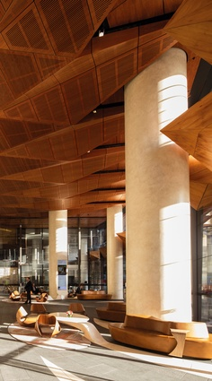 The tower's curving mass lends itself to robust and strikingly fluid shapes in the interior spaces where natural timber is celebrated.