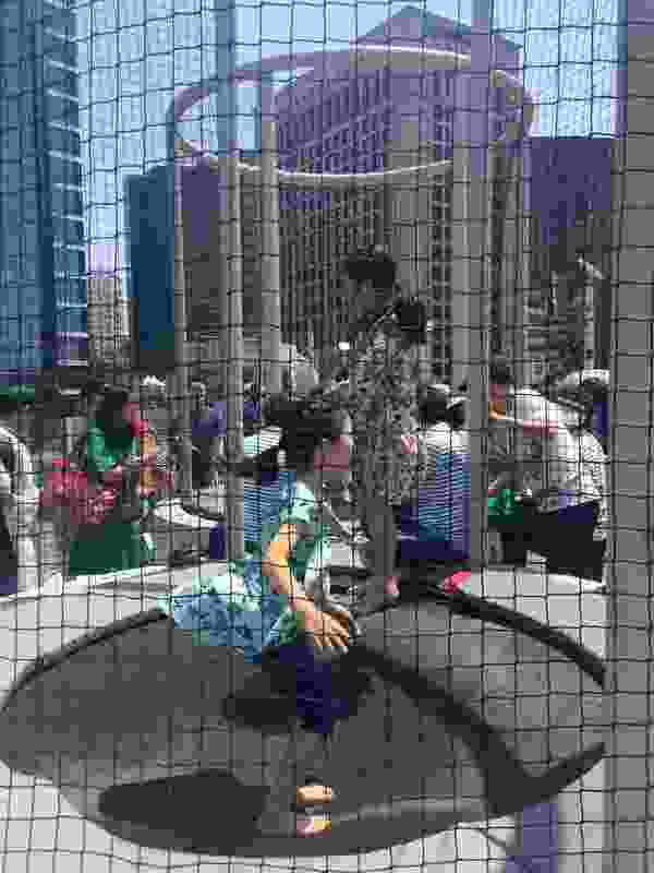 Children enjoy the enclosed public trampolines.