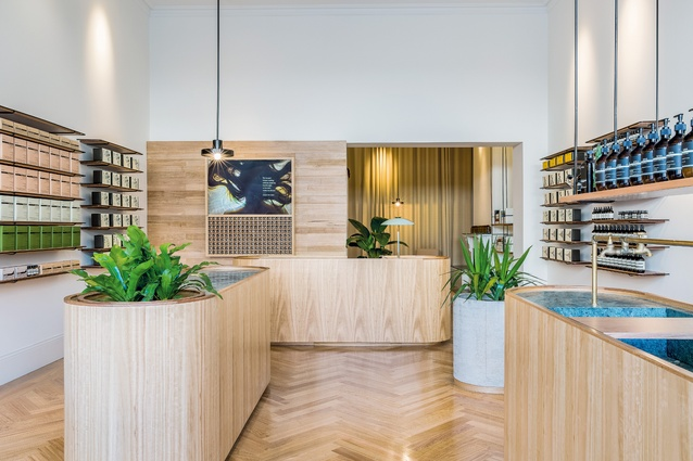 Aesop Rundle Street by Genesin Studio.