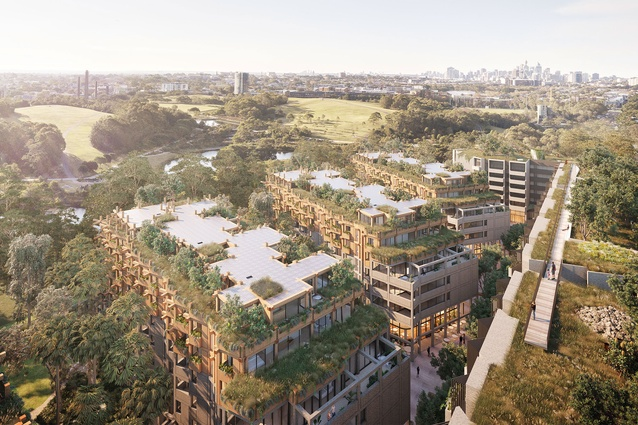 The proposed One Sydney Park development by MHN Design Union, Silvester Fuller and Sue Barnsley Design will have solar panels integrated into the roofscapes.
