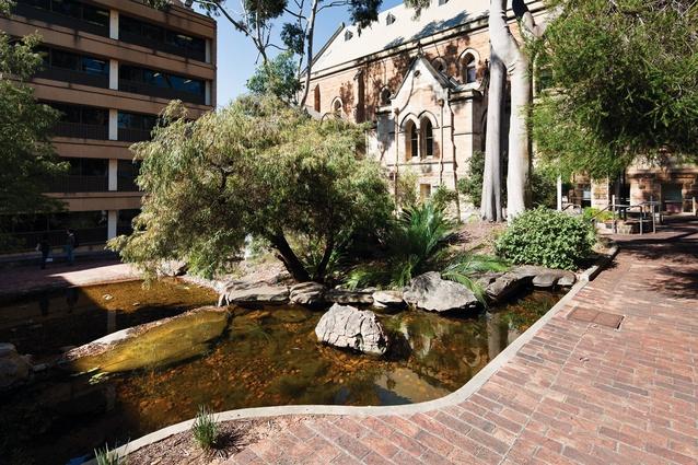 Wills courtyard university of adelaide landscape australia for Courtyard landscaping adelaide