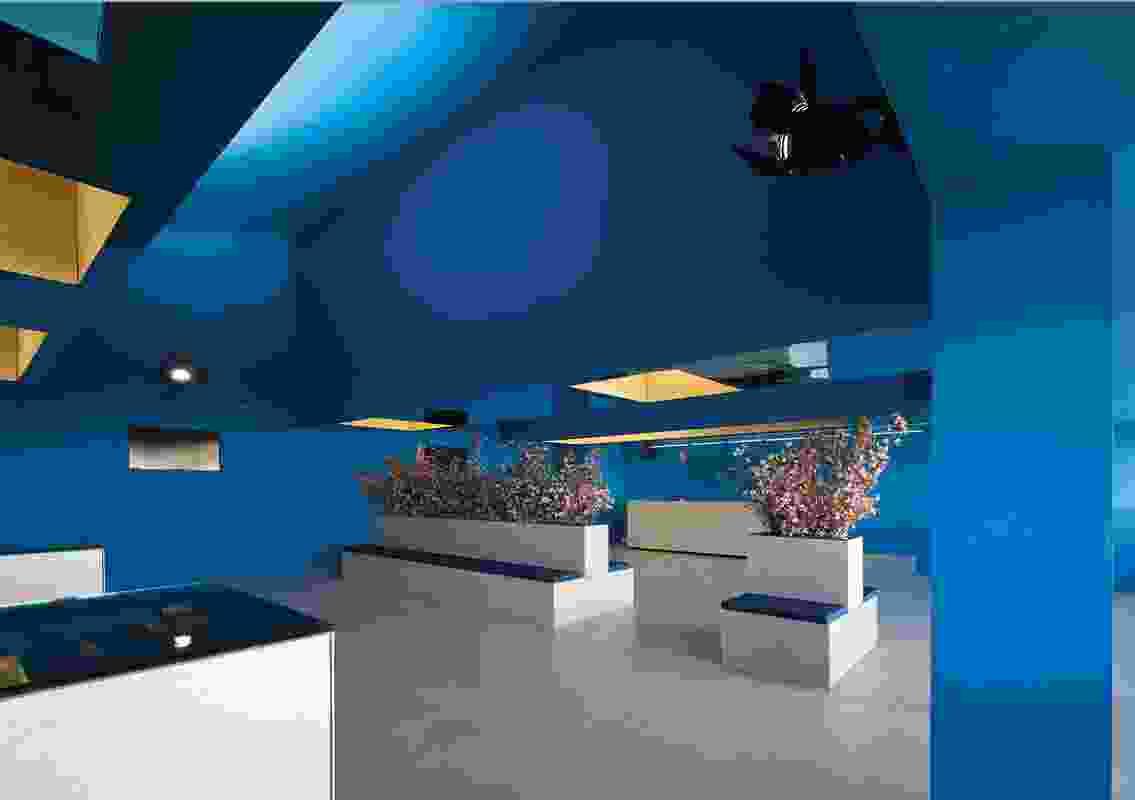 Colour in Commercial Design – Bleu by Herbert & Mason.