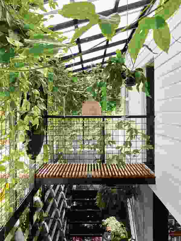 "The house's eponymous ""terrarium"" was created by installing a light trellis of welded mesh, which is now heaving with vines."